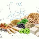 5 NUTRIENTES CLAVE EN DIETAS VEGANAS