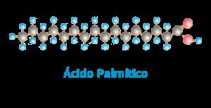 acido-p.fw