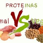 Proteínas: Dónde encontrarlas y cómo combinarlas para obtener una proteína de alto valor biológico.