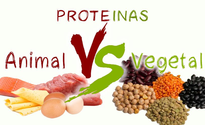 proteinas destacada